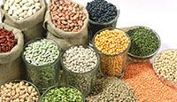 Hạt ngũ cốc, gạo cao cấp